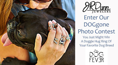 Enter to Win the DOGgone Photo Contest
